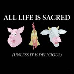 All life is sacred