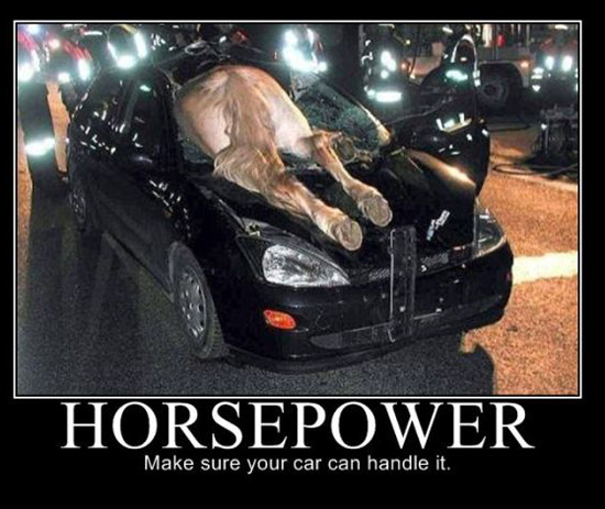 can you handle all the horsepower