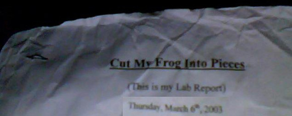 cut my frog into pieces this Misheard lyrics, performed by last resort cut my life into pieces this is my last resort suffocation, no breathing don't give a fk if i cut my arm bleeding.