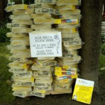 dear yellow pages...