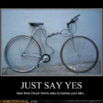 demotivational just say yes