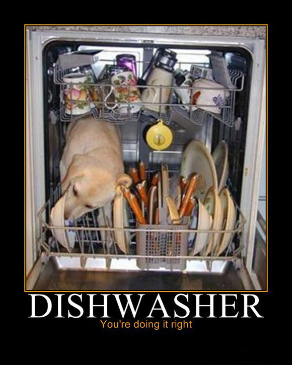 Dishwasher: You're doing it right!