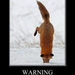 Warning: Firefox is stuck!