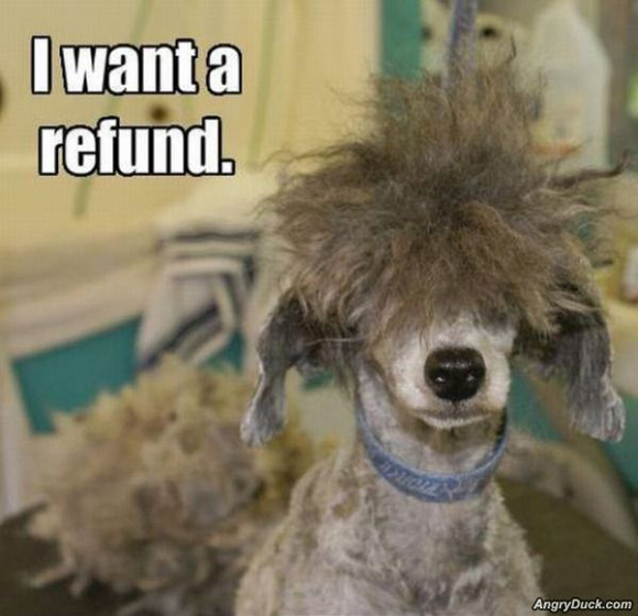 I want a refund!