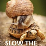Slow the @$%^# down!