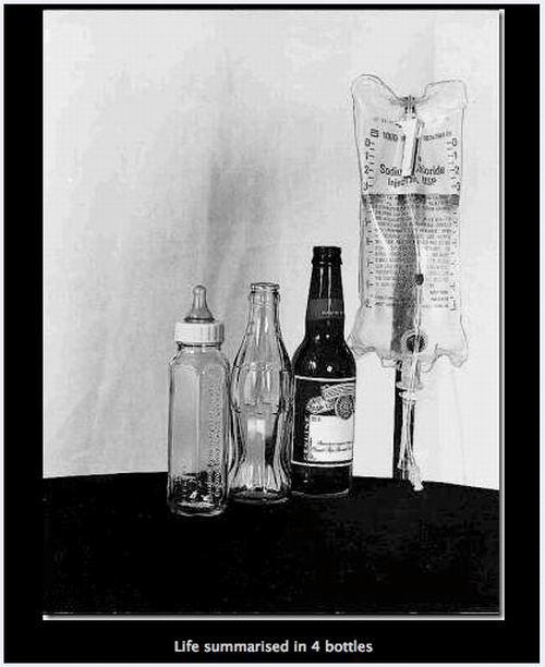 life summarised in four bottles