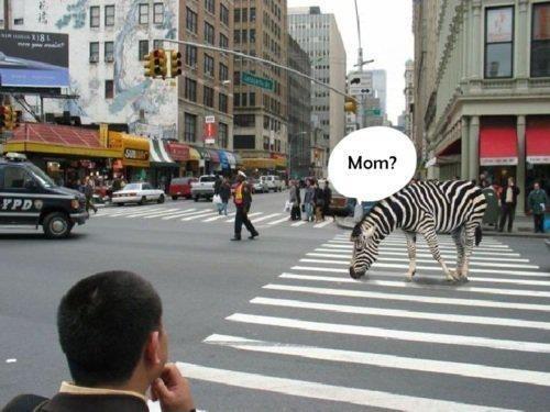Mom?!?