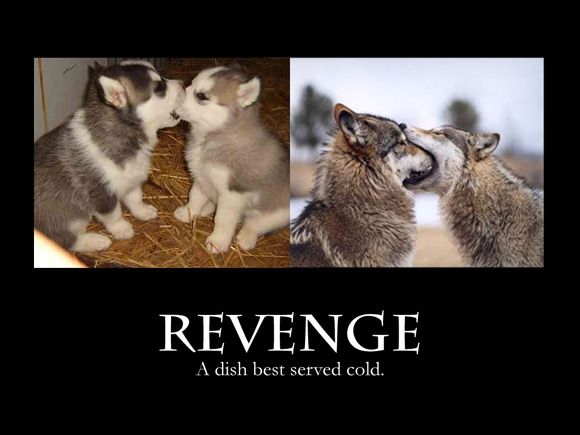 revenge is a dish best served cold