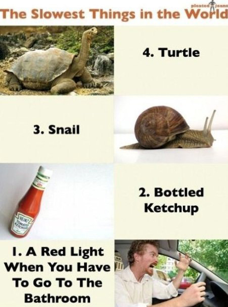 The slowest things in the world