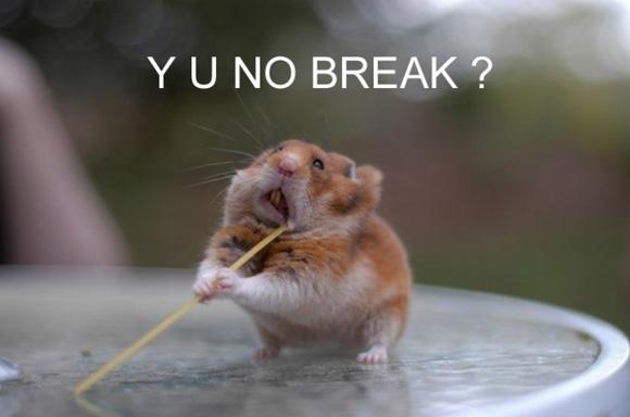 Y U NO break?!??
