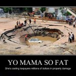 Yo mama so fat...
