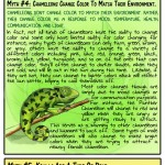 8 animal myths dispelled