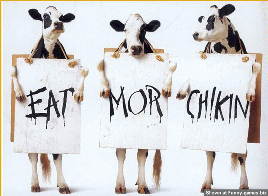 Eat more Chicken! Please...