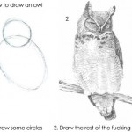 Tutorial: how-to draw an owl