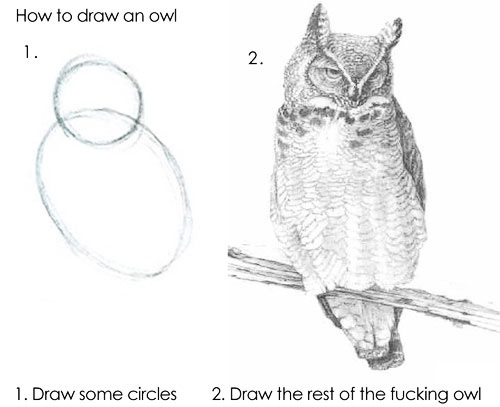 tutorial: how to draw an owl