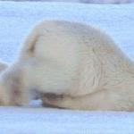 Mondays are unbearable