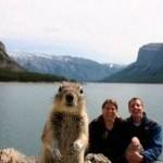 Photo bombing squirrel