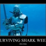 Surviving shark week: Like a Boss