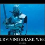 Surviving shark week: Like a Boss